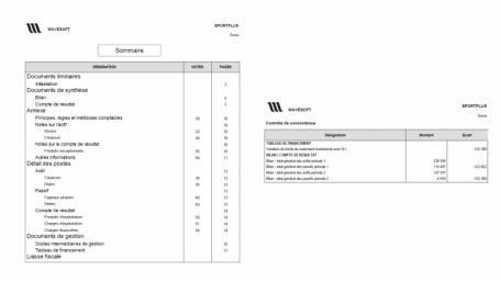 Logiciel Liasse fiscale agréée DGI, Révision des comptes, plaquettes des comptes annuels